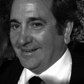 Sr. D. Ramón Bernar Canales